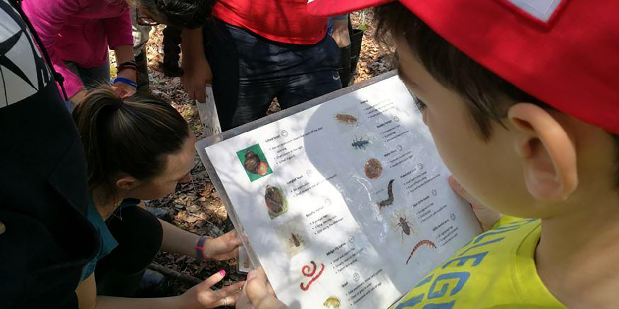 Child learning about bugs