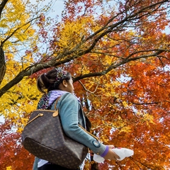 Student walking in fall forest